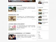 wordpress中文免费主题科技博客个人wp网站模板